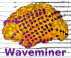 Waveminer Logo