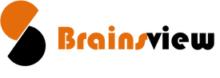 BrainsView Logo